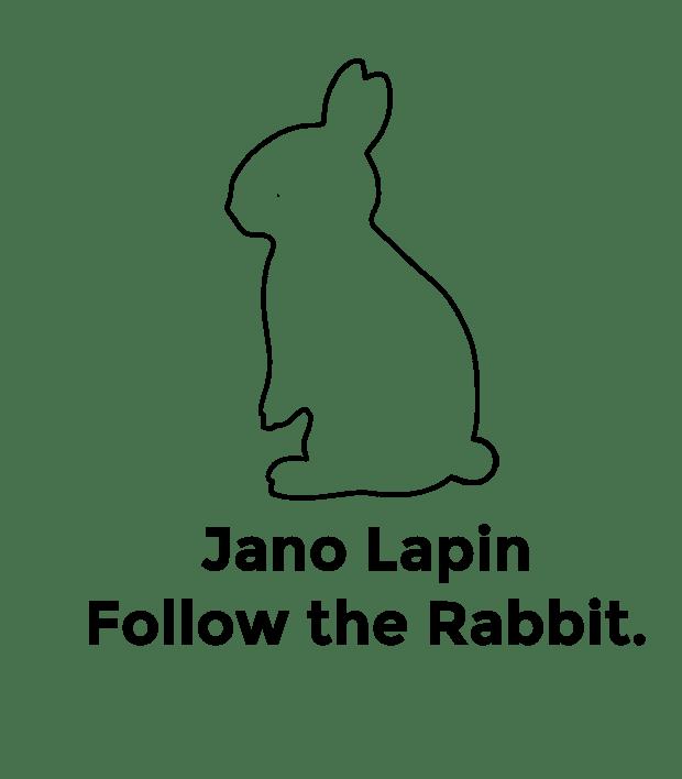 follow the rabbit.png
